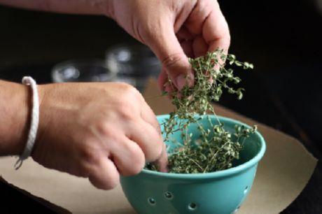 Сушёные травы (базилик и орегано)