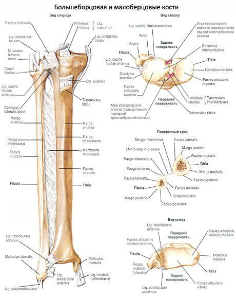 Киста солитарная кости