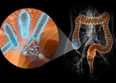 Чем лечить при беременности кишечную инфекцию