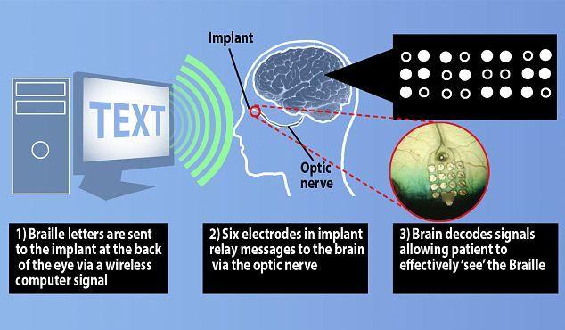 Учёные могут вернуть слепым людям зрение