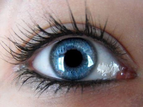 Учёные обнаружили от чего зависит острое зрение