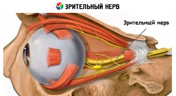 Объективные методы исследования при параличе лицевого нерва